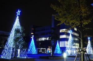 クリスマスイルミネーションの様子(写真:2012年度)