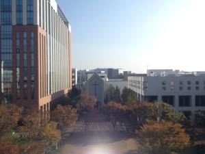 金沢八景キャンパスの様子(2013.11.17撮影)